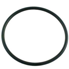 O-RING 172009 VITON - Pentair/Rainbow Models 300, 302, 300-19 Parts