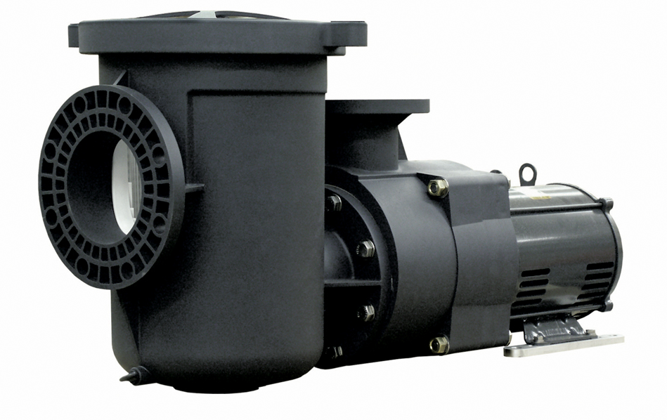 EQ500 5HP 1PH  230v w/Strainer - Pentair Commercial