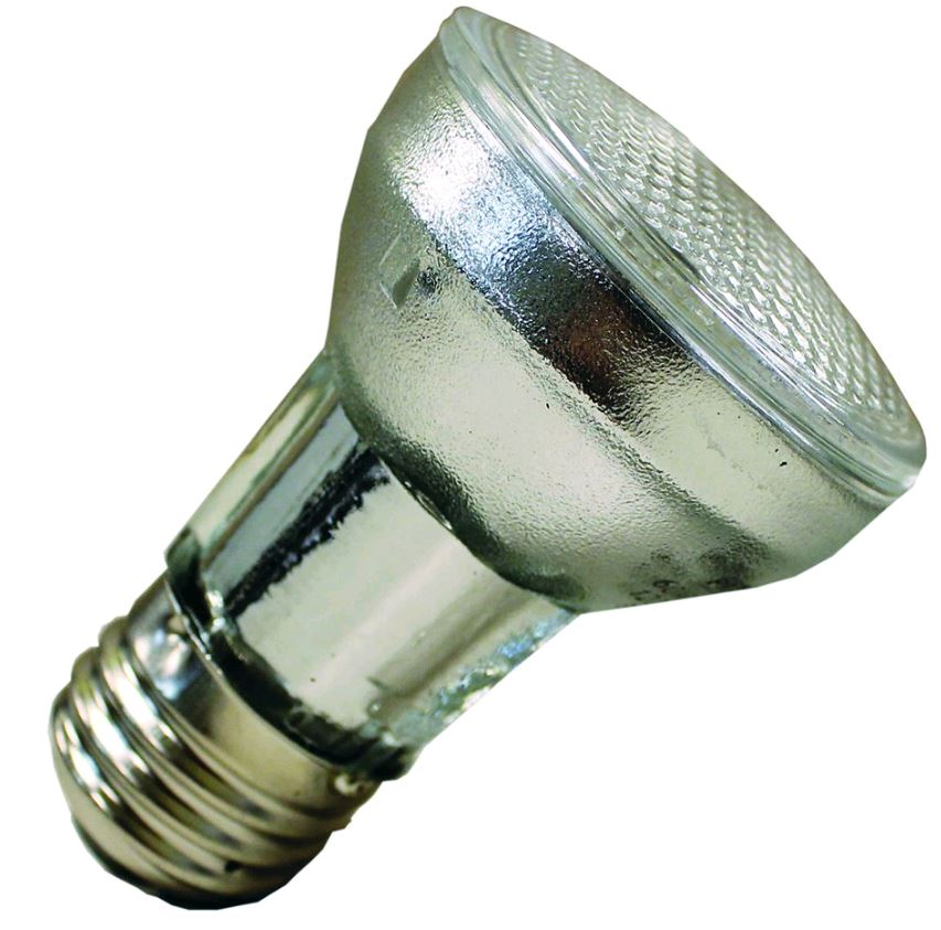 1Spa -R20 Flood Type Bulb (Small) 60W 120V PAR16  -107850-