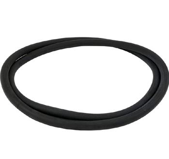 Sta-Rite System 3 Cord Ring 21in Tank - 24850-0008