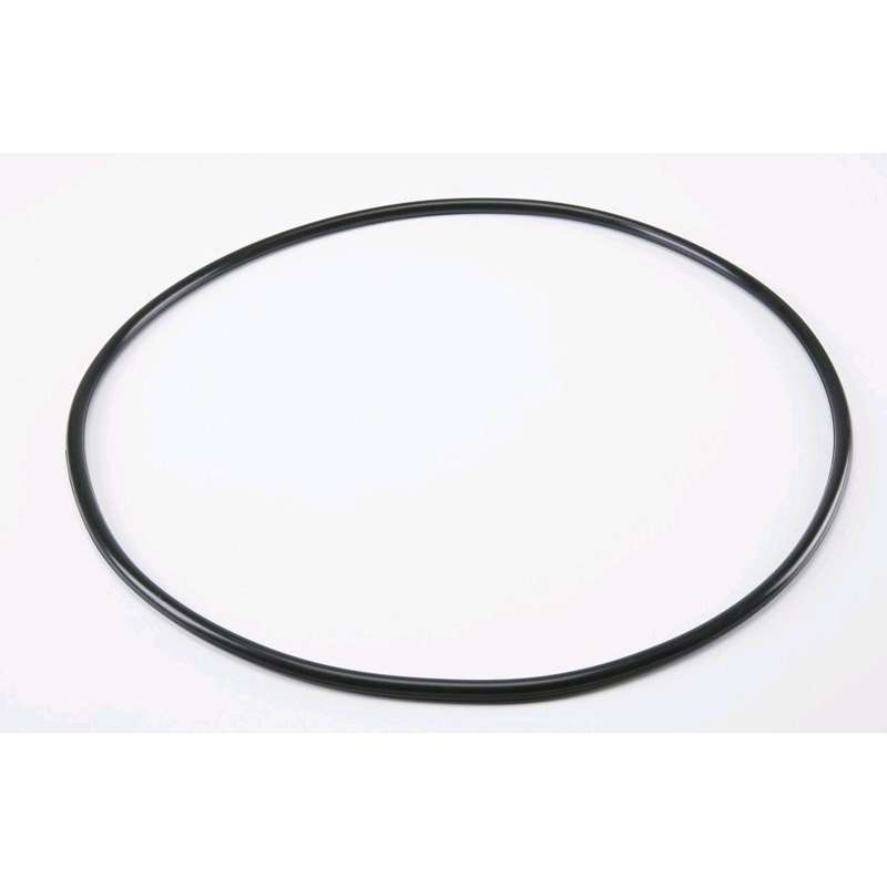 10 Pentair Tank O-Ring Replacement - 39010200