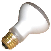 1Spa -R20 Flood Type Bulb (Small)100W 120V R20FL100